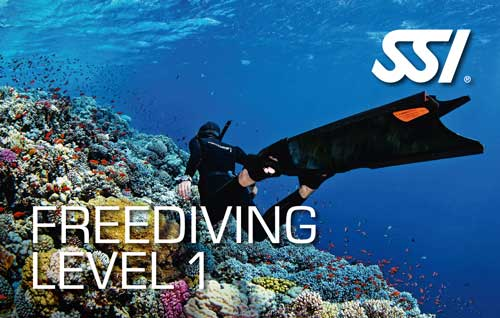 Freediving SSI Level 1 Course