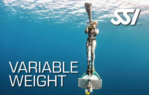 Variable Weight Speciality Course