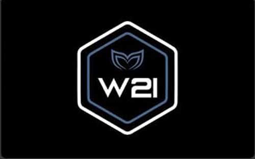 Molchanovs Wave 2 Instructor Badge