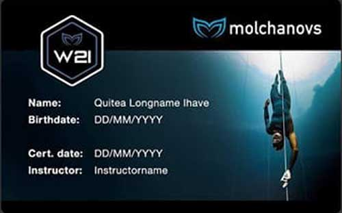 Molchanovs Wave 2 Instructor Certificate