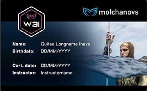 Molchanovs Wave 3 Instructor Certificate