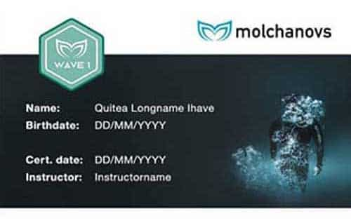 Molchanovs Wave 1 Certification