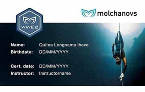 Molchanovs Wave 2 Certification