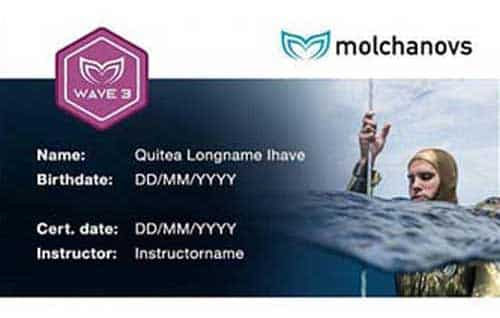 Molchanovs Wave 3 Certification