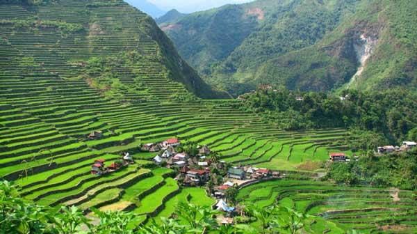 Baguio, Banaue and Sagada