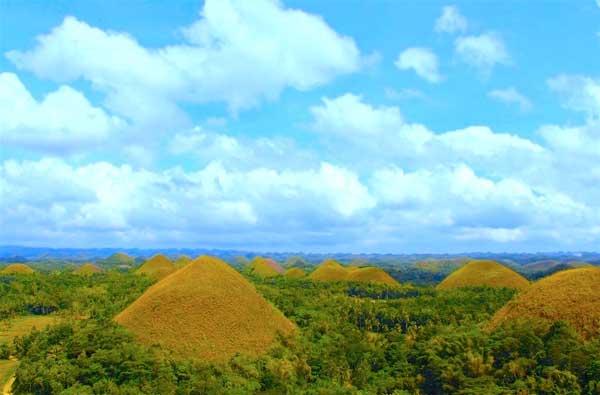 Visit the Chocolate Hills